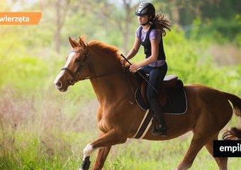 10 powodów by nauczyć się jeździć konno