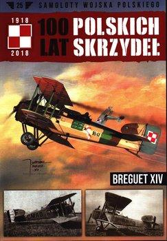 100 Lat Polskich Skrzydeł Samoloty Wojska Polskiego Nr 25