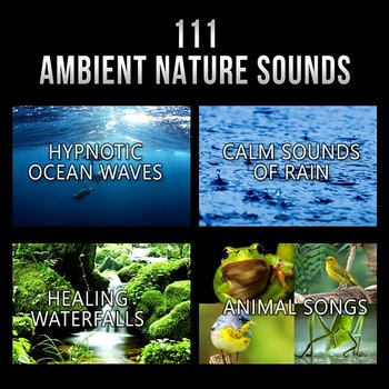 111 Ambient Nature Sounds: Best Relaxing Music, Hypnotic Ocean Waves, Calm  Sounds of Rain, White Noise, Healing Waterfalls and Animal Songs to Reduce