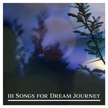 111 Songs for Dream Journey: Fall Asleep with Nature, Music for Sleep & Yoga and Meditation, Blissful Rest, Nature's Sounds, Positive Power, Harmony Balance, Tranquil Oasis-Calm Nature Oasis