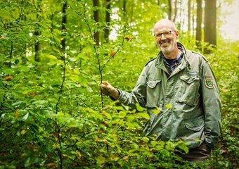 """Na czym polega fenomen książek """"Duchowe życie zwierząt"""" i """"Sekretne życie drzew""""?"""