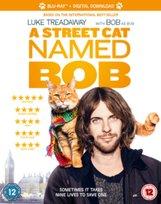 A Street Cat Named Bob -Spottiswoode Roger