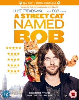 A Street Cat Named Bob-Spottiswoode Roger