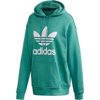 Adidas, Bluza damska, TRF HOODIE FM3297, zielony, rozmiar 34-Adidas