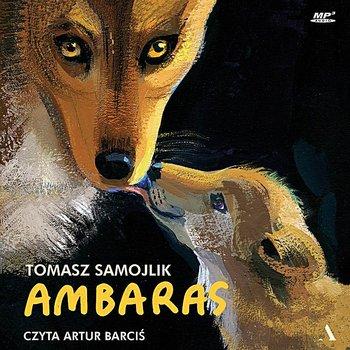 Ambaras-Samojlik Tomasz