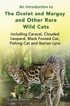 An introduction to The Ocelot and Margay and Other Rare Wild Cats Including Caracal, Clouded Leopard, Black Footed Cat, Fishing Cat and Iberian Lynx-Anderson Colette