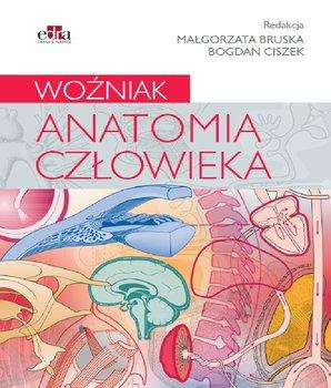 Anatomia człowieka-Opracowanie zbiorowe