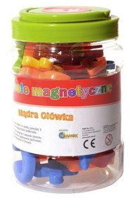 Anek, zabawka edukacyjna Symbole magnetyczne-Anek