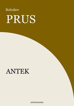 Antek-Prus Bolesław