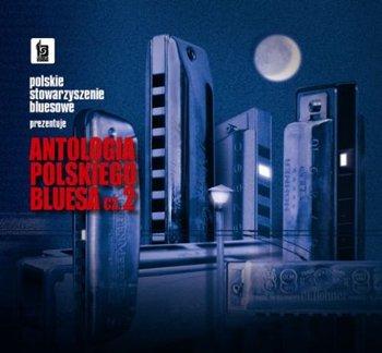 Antologia Polskiego Bluesa 2-Various Artists