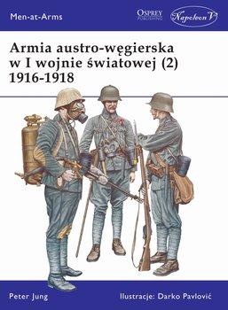 Armia austro-węgierska w I wojnie światowej (2) 1916-1918-Jung Peter