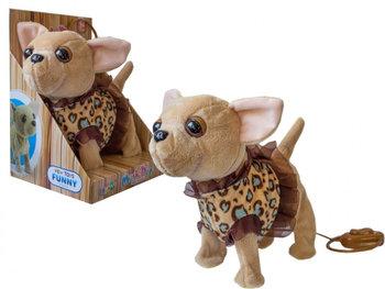 Askato, maskotka interaktywna Piesek Chihuahua-ASKATO