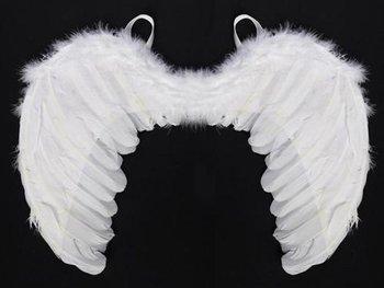 Aster, skrzydła Anioła dla dzieci-Aster