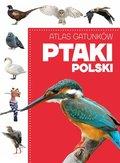 Atlas gatunków. Ptaki Polski-Opracowanie zbiorowe