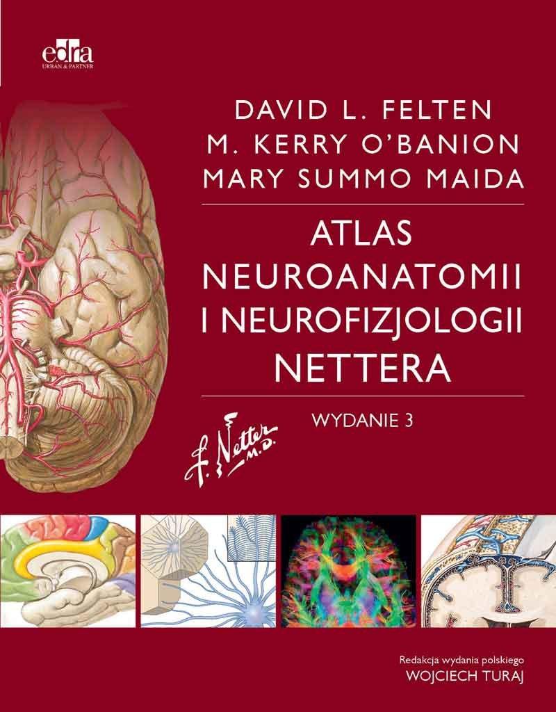 Atlas Neuroanatomii I Neurofizjologii Nettera Maida M Ksiazka W Sklepie Empik Com