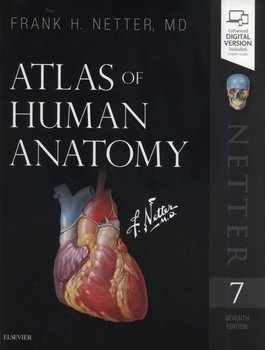Atlas of Human Anatomy 7th Edition - Netter Frank H.