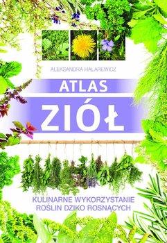 Atlas ziół. Kulinarne wykorzystanie roślin dziko rosnących-Halarewicz Aleksandra