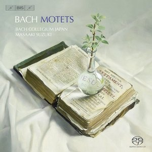 Bach Motets-Various Artists