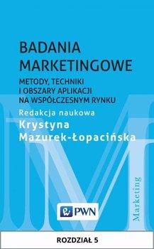 Badania marketingowe. Metody, techniki i obszary aplikacji na współczesnym rynku. Rozdział 5                      (ebook)