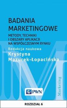 Badania marketingowe. Metody, techniki i obszary aplikacji na współczesnym rynku. Rozdział 6                      (ebook)