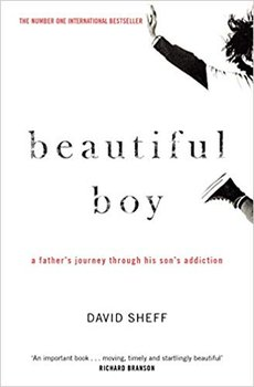 Beautiful Boy-Sheff David