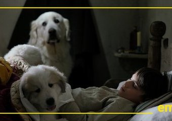 Bella i Sebastian 3 - co zdradził nam reżyser i aktor Clovis Cornillac?