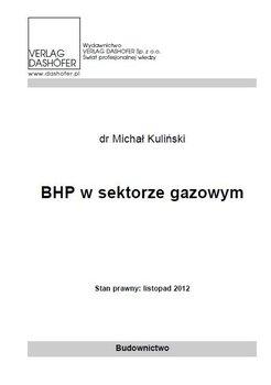 BHP w sektorze gazowym                      (ebook)