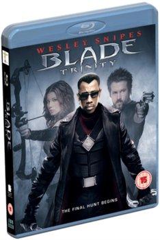 Blade: Trinity (brak polskiej wersji językowej)-Goyer David S.