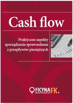 Cash flow. Praktyczne aspekty sporządzania sprawozdania z przepływów pieniężnych                      (ebook)