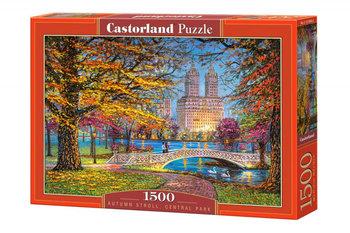 Castor, puzzle Central Park-Castorland