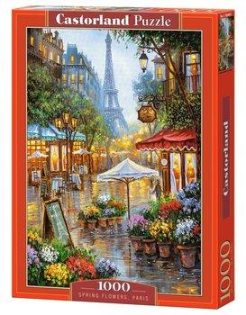 Castor, puzzle Paryż-Castorland