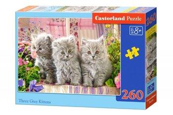 Castor, puzzle Szare kotki-Castorland