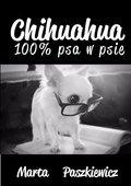 Chihuahua 100% psa w psie-Paszkiewicz Marta