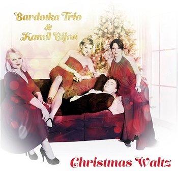 Christmas Waltz feat. Kamil Bijoś-Bardotka Trio