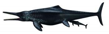 Collecta, figurka Dinozaur Temnodontozaur, rozmiar XL-Collecta