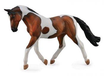 Collecta, figurka Koń rasy Pinto maści gniadej, rozmiar XL-Collecta