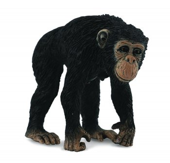 Collecta, figurka Szympans samica, rozmiar M-Collecta