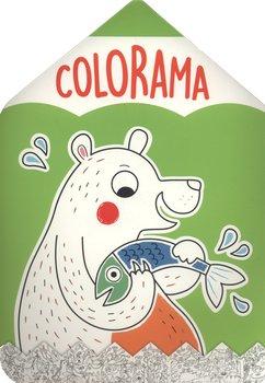 Colorama. Niedźwiadek - Opracowanie zbiorowe