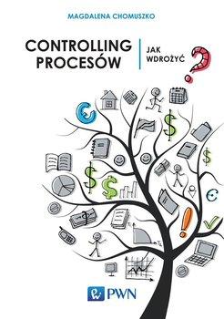 Controlling procesów. Jak wdrożyć?                      (ebook)