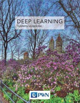 Deep Learning. Systemy uczące się-Goodfellow Ian, Bengio Yoshua, Courville Aaron