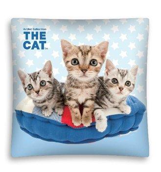 Detexpol, The Cat, Poszewka dziecięca, 40x40, Błękitna-Mówisz i Masz
