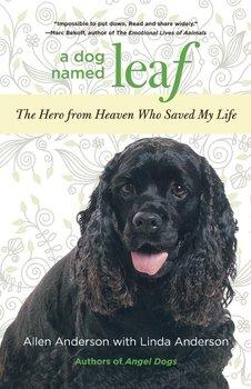 Dog Named Leaf-Anderson Allen