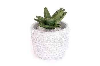 Dyfuzor SIL, doniczka z kaktusem, zapach srebrnej brzozy, 100 ml-Sil