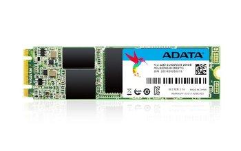 Dysk SSD ADATA Ultimate SU800, M.2, 256 GB, SATA III, 560 MB/s-Adata