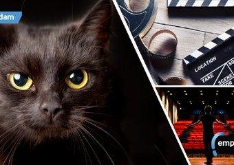 Dzień czarnego kota – filmowe i teatralne przesądy