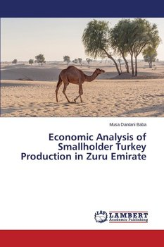 analysis of the turkish economy The turkish economy has achieved an outstanding an analysis recently carried out by the european union republic of turkey ministry of foreign affairs.