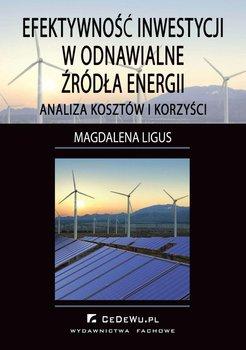 Efektywność inwestycji w odnawialne źródła energii. Analiza kosztów i korzyści-Ligus Magdalena