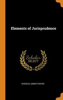 Elements of Jurisprudence-Foster Charles James