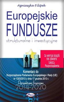 Europejskie Fundusze strukturalne i inwestycyjne                      (ebook)