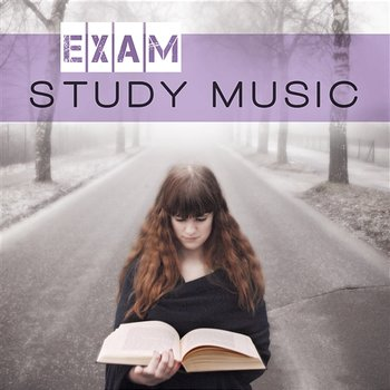 Exam Study Music: Train Your Brain with Famous Classical Composers - Stefan Ryterband